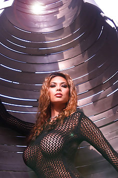 Busty Tera Patrick in mesh top